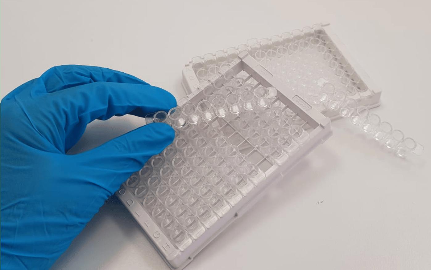 Biomat Immunotoxicity Plates for ELISA test