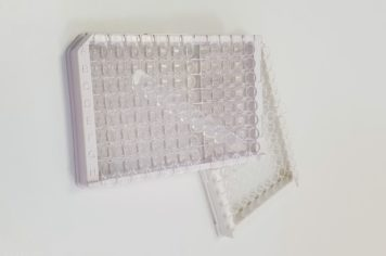 COVID-19 Serological ELISA Test Kits