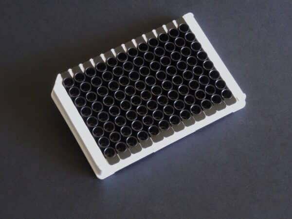 anti DYKDDDDK plate black