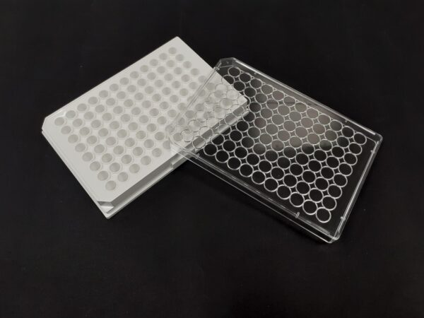 White 96 well plate with lid