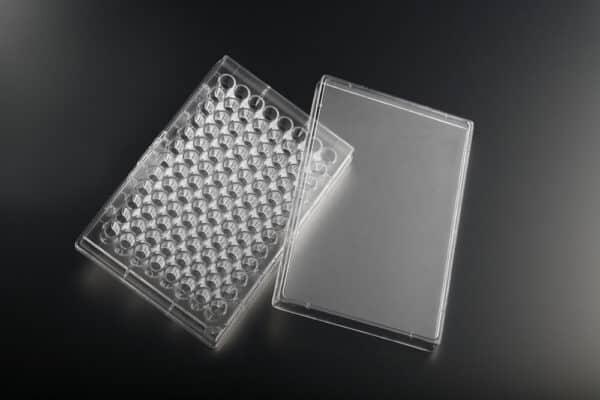poly-D-lysine cell culture 96w